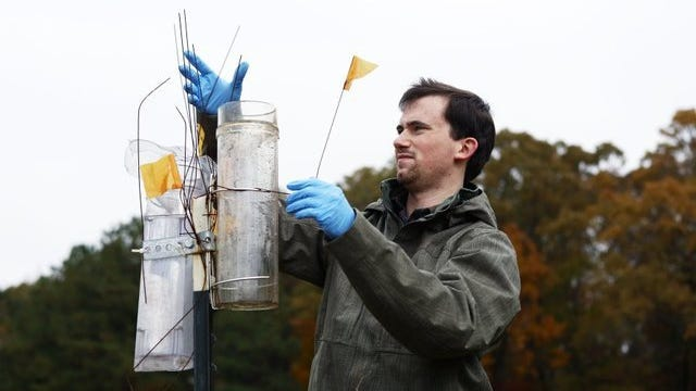 """John Bursi, a University of Memphis graduate student in the earth sciences department, conducts research in the """"recharge"""" area of the Memphis Sand aquifer in Fayette County in this file photo."""
