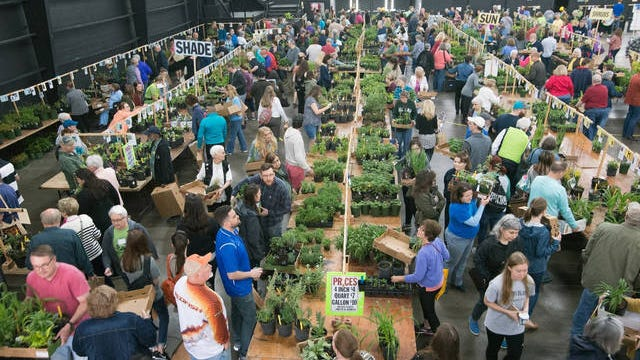 Set to take place inside the new building at the Nashville Fairgrounds on Saturday, April 4, the new venue offers more space to see both native and hybrid plants.