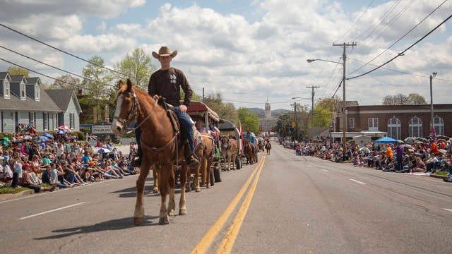 The Mule Day Parade makes its way down West 7th Street on Saturday, April 6, 2019.