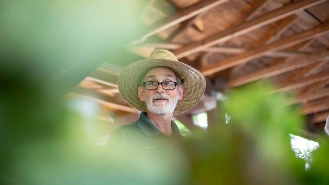 Larry Heidkamp of Our Farm on Mount Olivet looks over his fresh lettuce stocks during the Columbia Farmers' Fresh Market at Riverside Park on June 1, 2019.