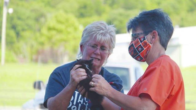 Susie Owens, left, shows veterinarian Jan Johnston Tharp an injury to a kitten's leg. Owens found the kitten near the Pawhuska animal shelter. Robert Smith/Journal-Capital