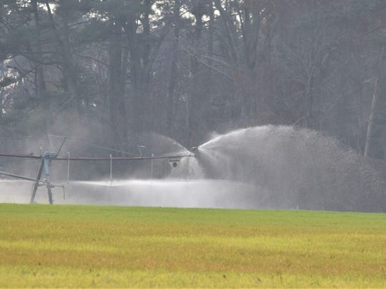 Mountaire Farms continues its spray operations on farm fields near its Millsboro-area plant after state regulators found the plant had been disposing of polluted waste on some of those fields.