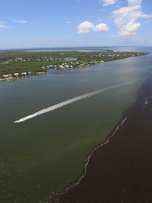 The South Florida Water Management District voted last week to set aside $200,000 of property taxes to study nitrogen in the Caloosahatchee River.releases and summer rain runoff.