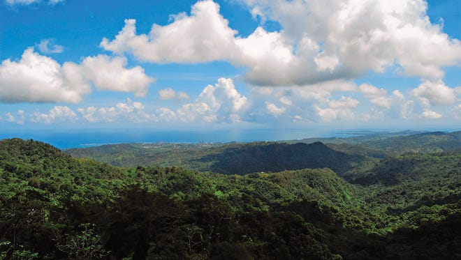 Lookout towers at El Yunque National Forest provide a 360 degree vantage point, allowing views of the rainforest, the Luquillo Mountains, and San Juan.