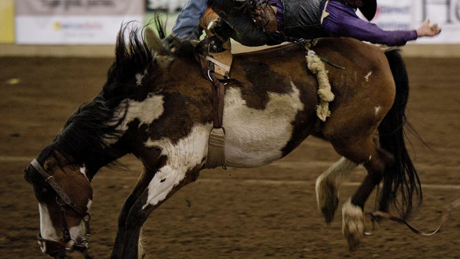 The 67th annual Franklin Rodeo will be held at the Williamson County Ag Expo Park on Thursday through Saturday.