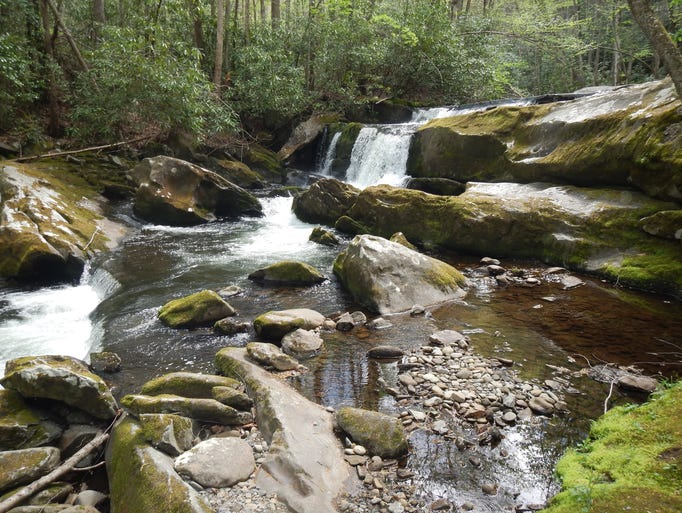 Most GSMNP waters are small and laced with swirling