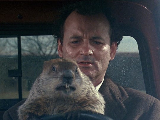"""Bill Murray stars in the 1993 comedy """"Groundhog Day"""""""