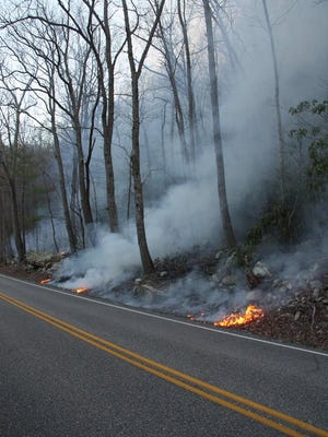 Burn lines to help contain the wildfire at Goshen Pass.