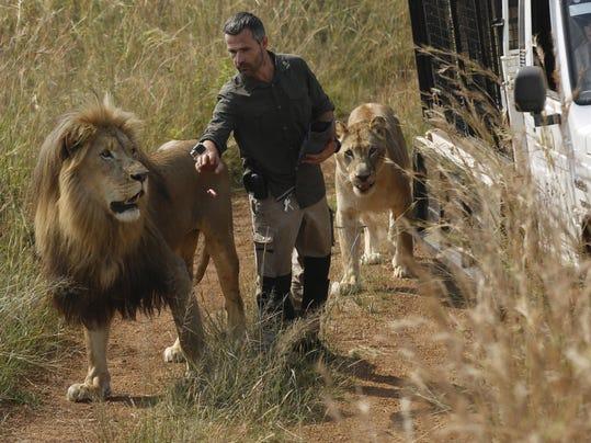 South Africa Lion Kills Woman