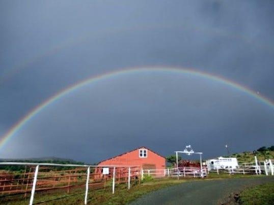 rainbow matt