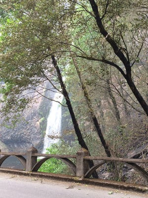Damage from the Eagle Creek Fire at Horsetail Falls in the Columbia River Gorge.