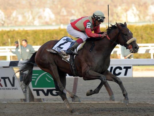 Aqueduct Horse Racing_Levi.jpg
