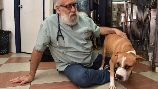 Wise Owl Animal Care veterinarian Dr. Joel Joseph said a pit bull that arrived at his clinic with a knife stuck in its forehead will make a full recovery.