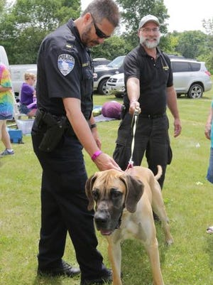 Plymouth Police Department's Lt. Jason Schmelter checks over Joey, a great dane owned by Bruce Monroe of Sheboygan Falls during Canines for K-9 Saturday June 20, 2015 at Elkhart Lake's Road America.