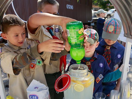 Boy Scouts of America Troop 325 and Cub Scouts Pack