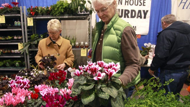 Attendees look at cyclamen plants during a previous Lawn and Garden Show at the Ozark Empire Fairgrounds.