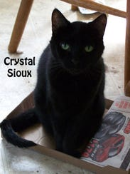 blackcat-crystal