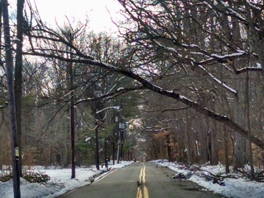 Miller Road in South Brunswick has several trees on