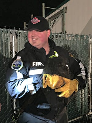 A trapped dog was rescued by Salem Fire Department crew members Sunday night.