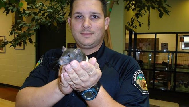Animal Control Officer James Huffman, the officer who  retrieved the critter.