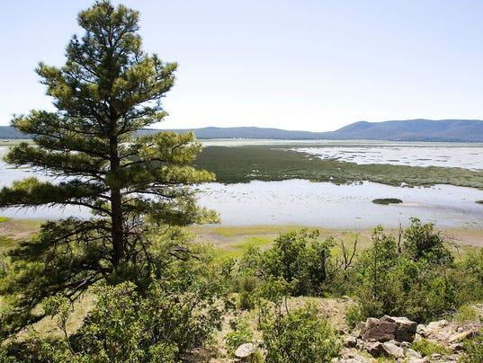 Mormon Lake