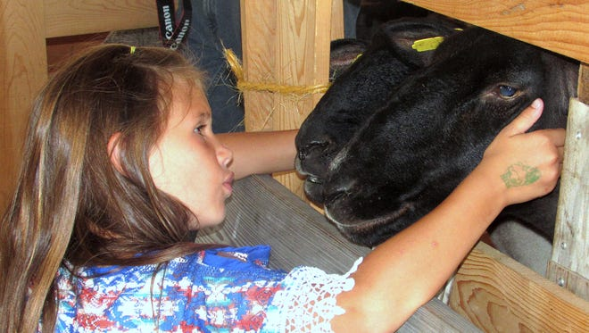 Alyssa Dulaney, 8, of Towanda, meets some new friends Thursday morning in the livestock section of the Troy Fair. The fair continues through Saturday at Alparon Park.