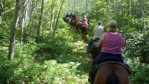 This year's Northern Saddle Club trail ride will take place on Hall's Creek Equestrian Trail System.