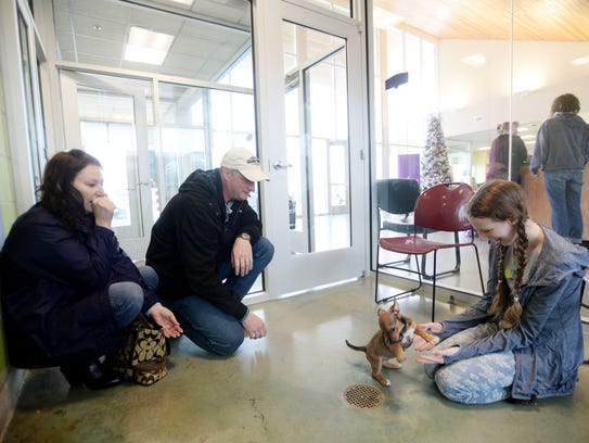 A family looks at a puppy in a viewing room where people