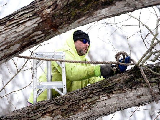 Mike Melet, a supervisor with Jersey Tree Care, hooks