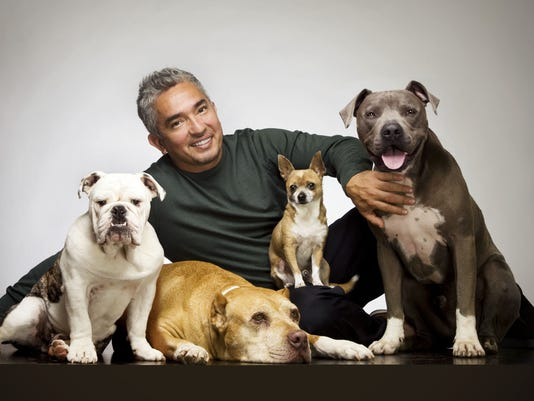 Cesar Millan Undocumented Immigrants Coming Out
