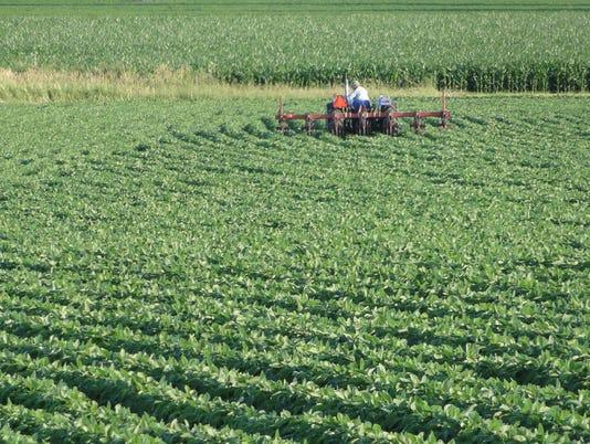 636114412153428045-cropsfarmers.JPG