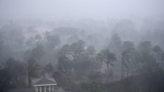 Palm trees blow in the wind as Hurricane Irma passes through Naples, Fla., Sunday, Sept. 10, 2017. (AP Photo/David Goldman)