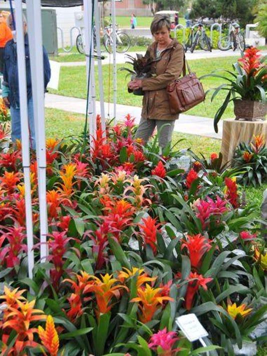 635613237645184964-Botanical-Fest-11.jpg