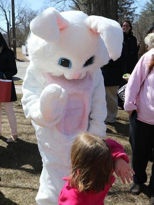 636579131336620061-bunny.jpg