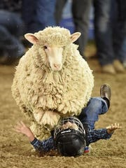 Mutton Bustin returns for the 99th Reno Rodeo.