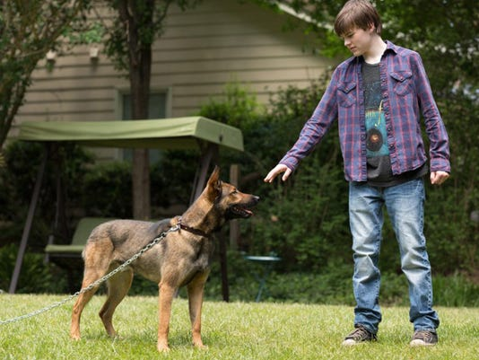 4-legged hero in the spotlight in 'Max'
