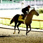 Competitive Edge, shown winning the Pat Day Mile at Churchill Downs, will challenge American Pharoah in the Haskell Invitational at Monmouth Park.