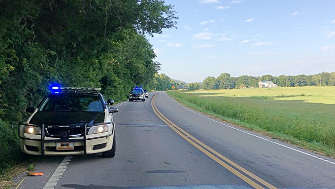 The scene of a deer-caused fatal wreck on Yellow Creek Road (Highway 46) in Dickson County on Monday morning.