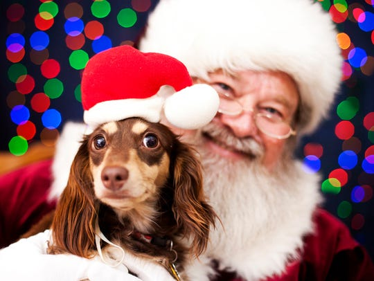 Get your pet's photo taken with Santa at the gazebo in Cocoa Village.