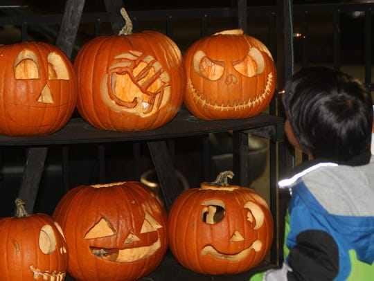 Some of the pumpkins on display.