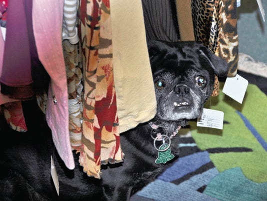 Maddie peeks through a clothing rack at Furs and Spurs, located at 2206 Sudderth Drive.