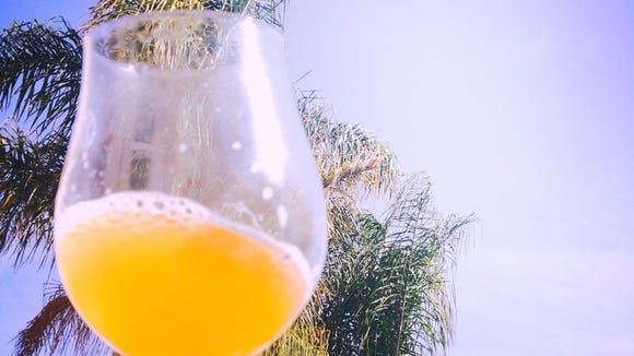 More than 40 sour beers were available to try at Salinas backyard sour beer tasting.