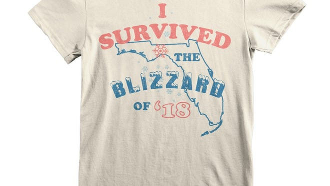 T-shirts and hoodies commemorating Wednesday's snowstorm in Florida are on sale, with proceeds benefiting charity.