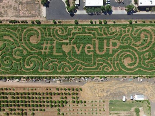 A former Vertuccio Farms Corn Maze.