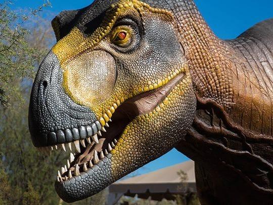 La exhibición de los Dinosaurios en el desierto del