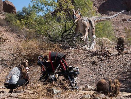 Los visitantes interactúan con un dinosaurio animatronic