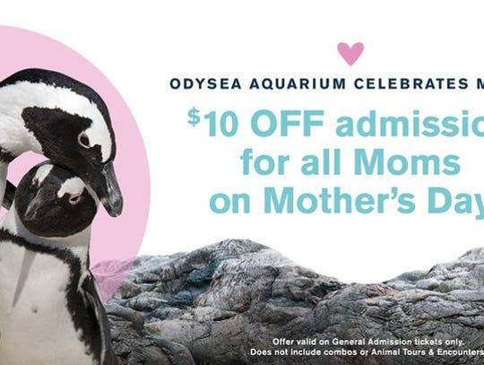 La madre recibe un gran descuento en el OdySea Aquarium