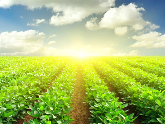 635570215255716141-m-earth-crop