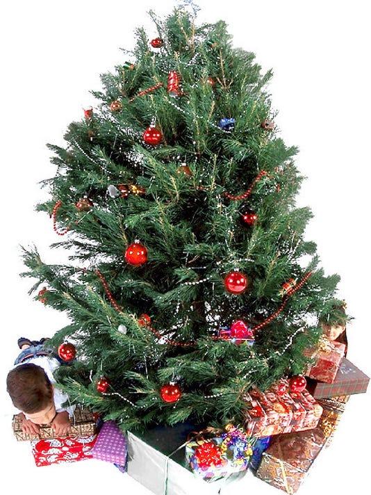 636500586071578693-Christmas-tree-12-1.jpg