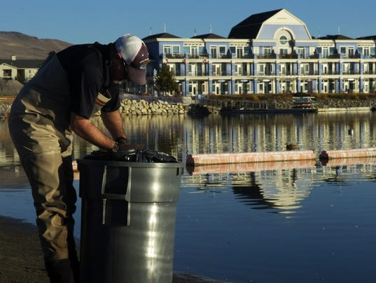 Low water oxygen levels suspected of Sparks Marina fish kill